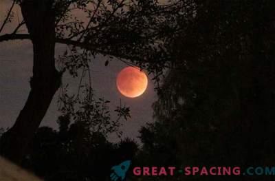 Den fantastiska blodmånen slog världen: foto